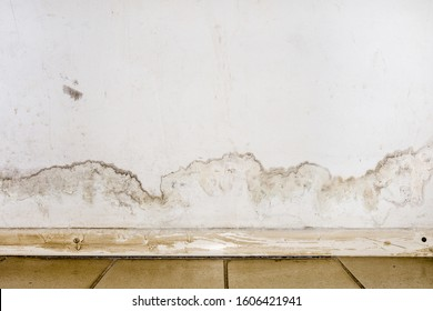Flooding rainwater or floor heating systems, causing damage, peeling paint and mildew. - image