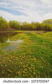 Floodplains of Zagyva river with puddles of water during the floods