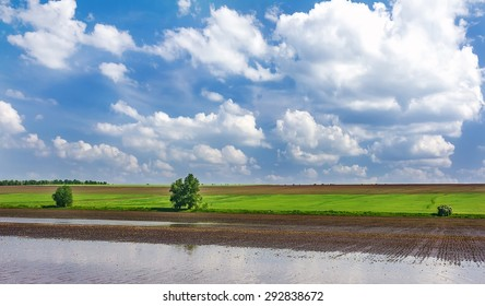 floods in the background of green field and blue clouds