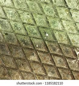 Floor in the garden