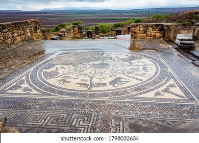 Floor mosaic in Orpfeus house in Roman ruins ancient Roman city of Volubilis, Morocco, North Africa.