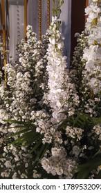 花咲く花のお祭り的な背景に華やかなバラとラン、パステルと柔らかいブーケ花柄のカード。 バレンタインと除草のコンセプト。