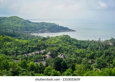 Flora and fauna of the tropical peninsula. Gokarna Village, India