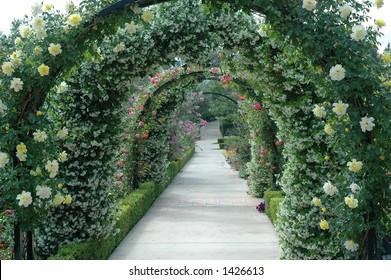Floral Archway-Background