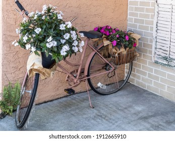 Floral arrangements in pots on handlebars and in rear baskets of painted old bicycle standing in front of retail shop (off camera) in a beach town in Florida