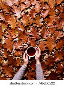 Floral autumn background. A mug of tea or coffee in a woman's hands in a sweater on the fallen orange leaves of oak background. Hello November autumn mood. Flat lay instagram drink composition.