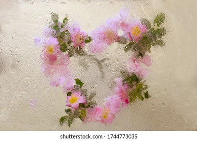 Floral background with flowers decorated in shape of a heart with water drops on a glass surface