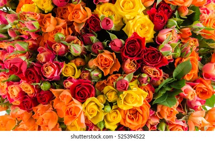 floral background with fresh flower