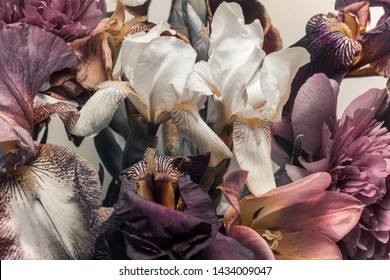 floral background, irises and other garden flowers, magenta colors.
