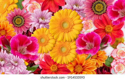 Floral background with multicolored flowers