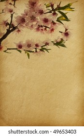 floral background with space for text or image.  flower paper textures.