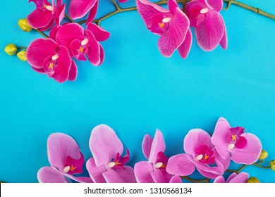 Floral background of tropical pink orchids on blue background. Copy space