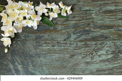 Floral background with white jasmine flowers on a wooden plank. Decorative side border or frame with white jasmine flowers in the corner on a wooden background, Mock orange jasmine - Philadelphus.