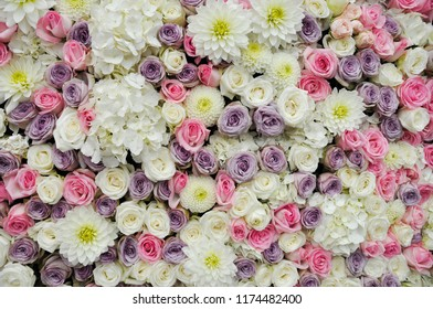 Floral background  in white, pink and lilac