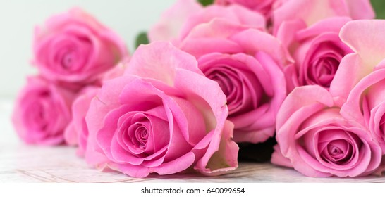 Floral banner - Header with pink roses on stone floor