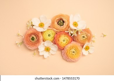 Floral beauty flat lays with ranuculus and anemones