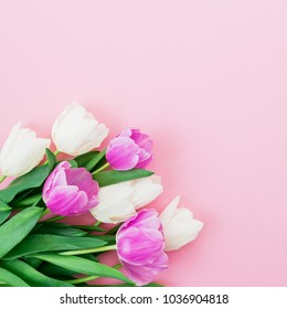 Floral composition with bouquet of white and pink tulips on pastel background. Flat lay, top view. Woman day background.