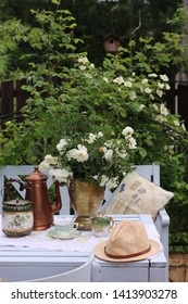 Floral composition with dog roses in vintage metal planter, cooper coffeepot, antique biscuit jar, porcelain tea cup, milkman on table, bush of roses background, morning in garden, outdoor and space