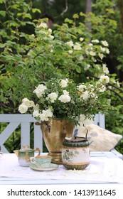 Imágenes, fotos de stock y vectores sobre Jardin Blanc ...