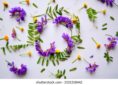 floral composition  frame of wild-growing violet and yellow flowers and green leaves on a white background. Flat lay, top view, copy space