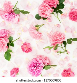 Floral composition of pink rose flowers on white background. Flat lay, Top view. Flowers texture.