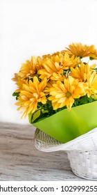 Floral composition with yellow daisies