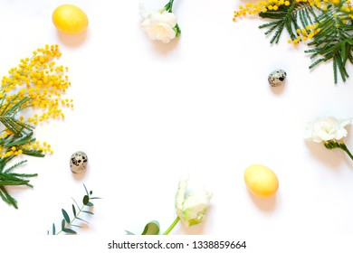 Floral Easter frame with mimosas and painted eggs on the white background. Top view. Copy space