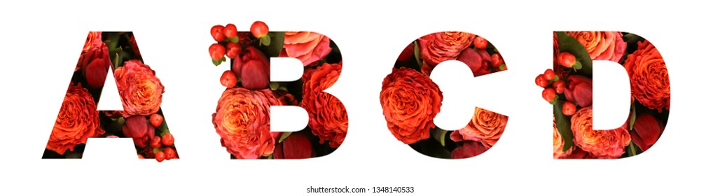 Floral font letter ABCD from a real red-orange roses for bright design. Stylish font of flowers for conceptual ideas.