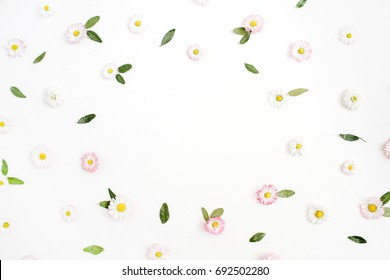Floral frame made of white and pink chamomile daisy flowers, green leaves on white background. Flat lay, top view. Daisy background. Frame of flower buds.