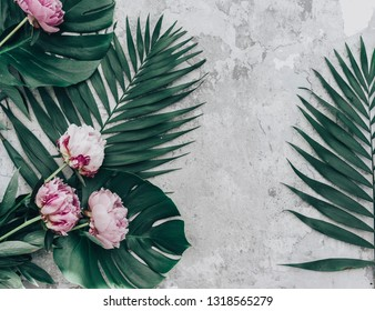 Floral frame with pink peonies and tropical leaves. Top view, flat lay