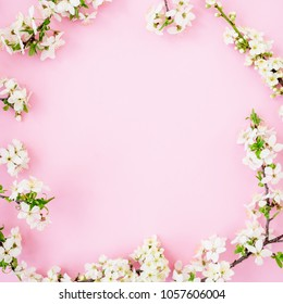 Floral frame with spring flowers isolated on pink background. Flat lay, top view. Spring time background.