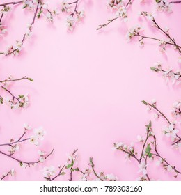 Floral frame of spring flowers isolated on pink background. Flat lay, top view. Spring time background.