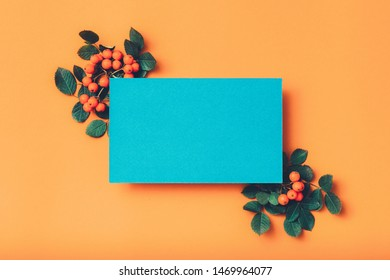 Floral greeting card. Blue mockup paper sheet with ashberry decoration on orange background. Copy space.