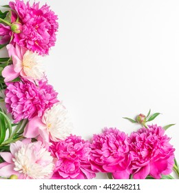 Floral greeting card or frame for greeting text. Template for Valentine's Day card with pink flowers peonies.