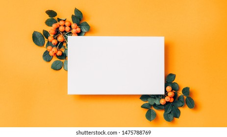 Floral greeting card. White mockup paper sheet with ashberry decoration on orange background. Copy space.