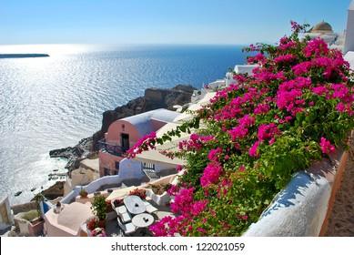 Floral hill in Oia, Santorini