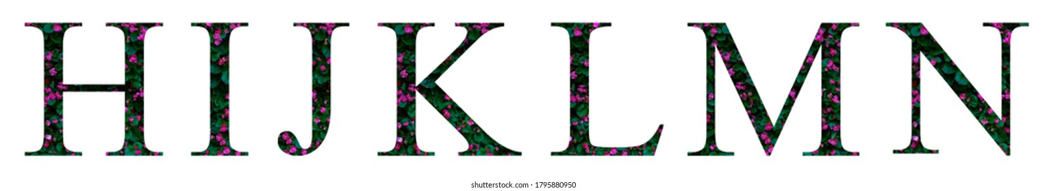 Floral letters. The letters H, I, J, K, L, M, N are made from colorful flower photos. A collection of wonderful flora letters for unique spring decorations and various creation ideas. clipping path