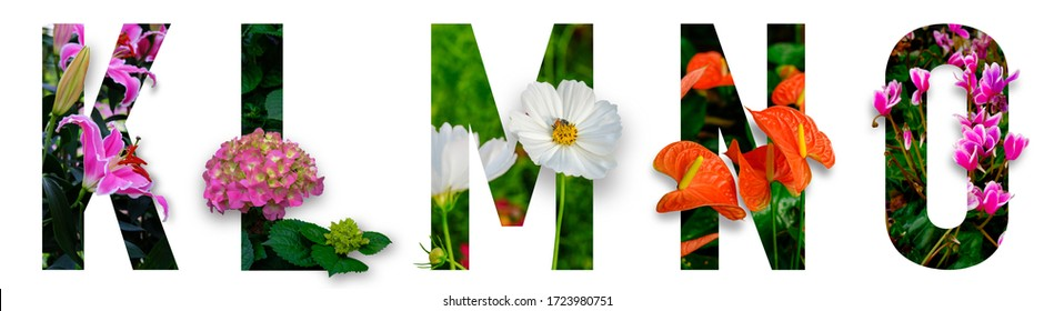 Floral letters. The letters K, L, M, N, O are made from colorful flower photos. A collection of wonderful flora letters for unique spring decorations and various creation ideas. clipping path - Shutterstock ID 1723980751