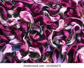 Floral motive: dried flower petals background, top view