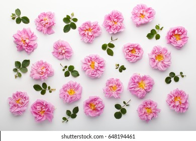 Floral pattern made of pink damask roses and green leaves on white background. Flat lay, top view.