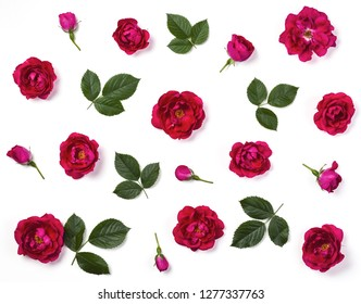 Floral pattern made of pink rose flowers, buds and green leaves isolated on white background. Flat lay. Top view.