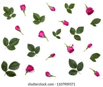 Floral pattern made of pink rosebuds and green leaves isolated on white background. Flat lay. Top view.
