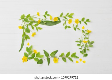 floral pattern with yellow buttercups on a white background