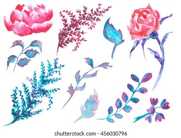 floral watercolor ,delicate,design,drawn
