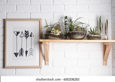 Florarium in glass vases with succulents on wooden shelf