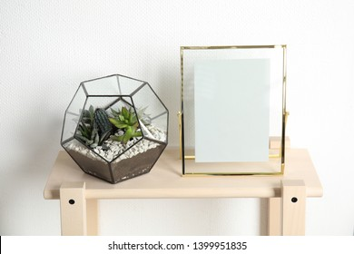 Florarium with succulent plants and photo frame on table near white wall, space for design. Home decor