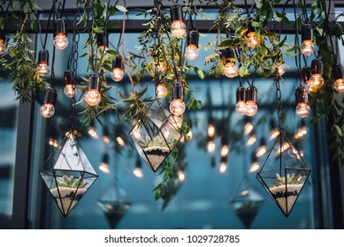 Florariums with stones and flowers hang among the lamps from the ceiling. Decor
