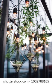 Florariums with stones and flowers hang among the lamps from the ceiling. Handmade. DIY. Decor. Wedding