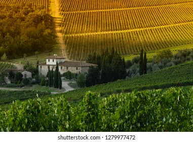 Florence, 7 September 2018: Farmhouse near Le Sieci (Florence) with green vineyards at sunset. Chianti region, Italy
