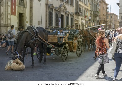 Florence (Italy) 17-070 2017 - Horses and Carriages are waiting for tourists to go for a tour in the city. The street is full of casual tourists walking in the street on a sunny day in the summer.